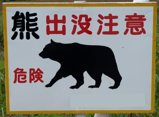 【キャンプ】ある日、森の中、クマさんに出会った!! どうする!?