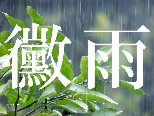 黴雨と梅雨と殺人カビ / お見舞いに「花」は御法度という話