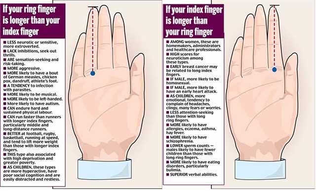 【二本指の法則】女性なのに男性脳?? 薬指の長さを見てみましょう!!